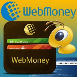 Взять онлайн займ на электронный кошелек займ под материнский капитал в втб 24